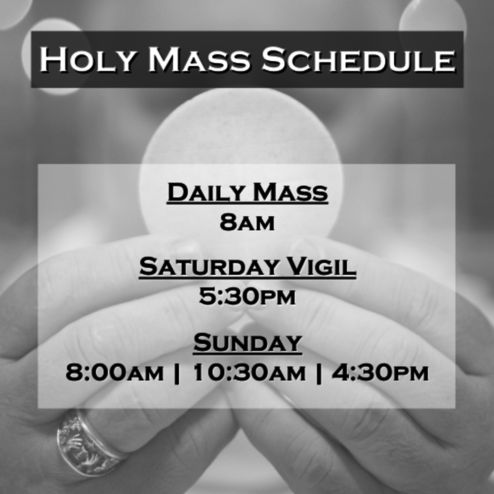 Holy Mass Schedule